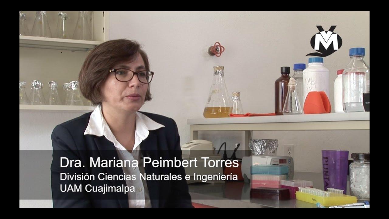 Dra. Mariana Peimbert – Estudio de comunidades bacterianas en la Ciudad de México
